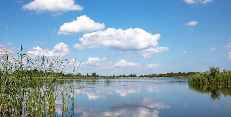 Hollandse Waterlinie4.jpg