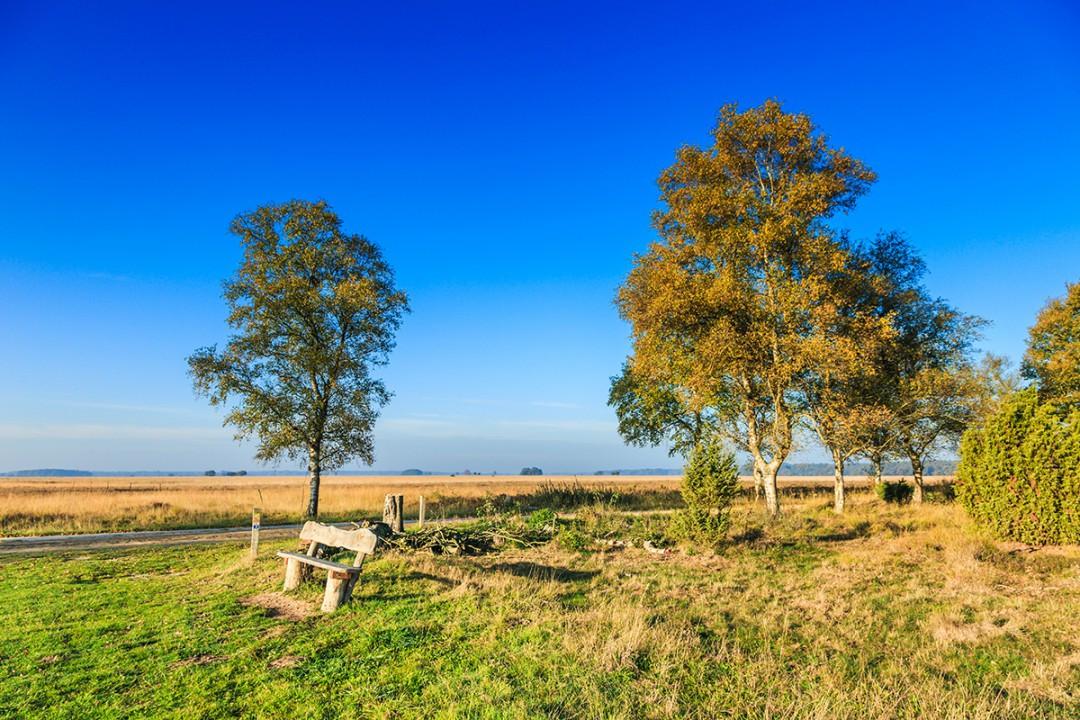 Dwalen door Drenthe4.jpg