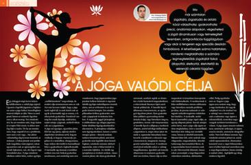 Jóga cikk: A jóga valódi célja