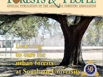 Southern University leads in urban forestry in U.S.