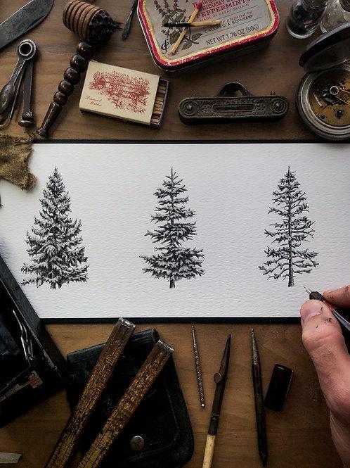 3 Pines V2