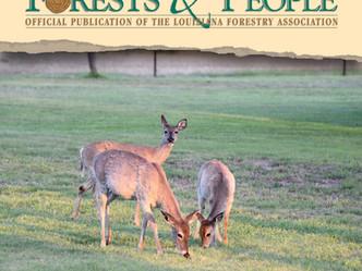 Cool-season food plots attract more deer