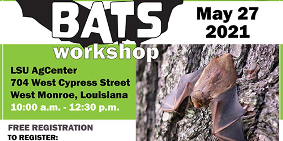 All About Bats Workshop