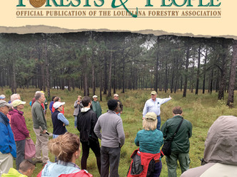 Sustaining longleaf pine forest is its goal