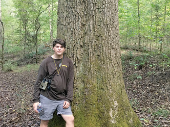 Haughton native finding state's largest trees