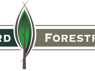 Foresters sought for Shreveport, Center areas