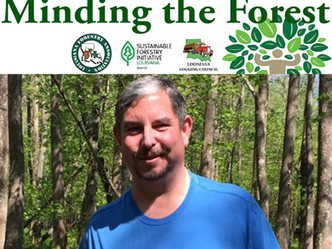 LSU AgCenter covers forestry