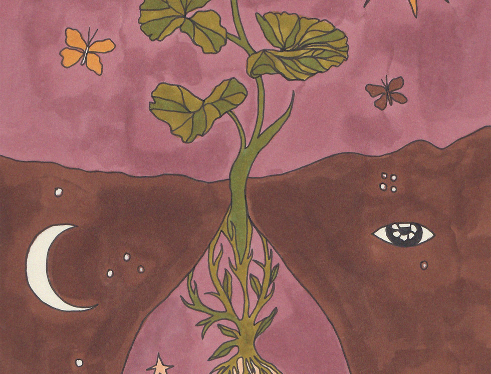 SEEDS II - india ink on paper