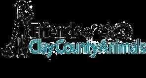 FOCCA-logo.png
