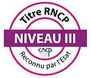 LOGO NIVEAU III RNCP.jpg