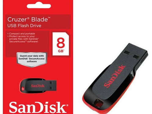 (28)8 GB SanDisk USB Flash drive
