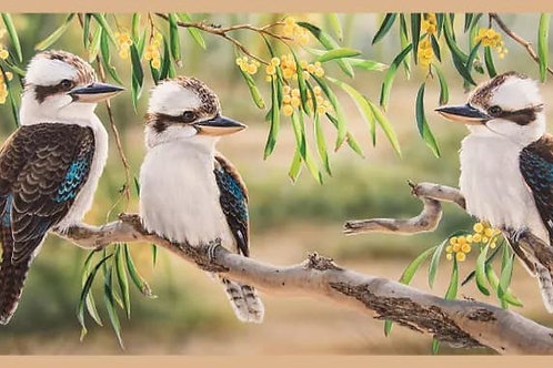 Australian Native Wildlife Panel Kookaburras