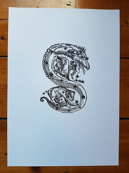 Medieval Dragon and Stars Astrology original lino print