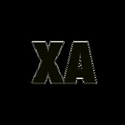 Recreation_of_X_Ambassadors_logo_edited_