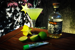 Cocktails @LeCercle Rouge