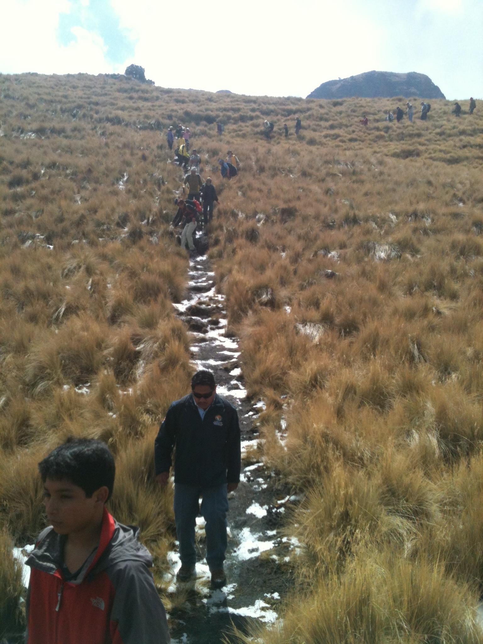 Reforestando el Iztaccíhuatl