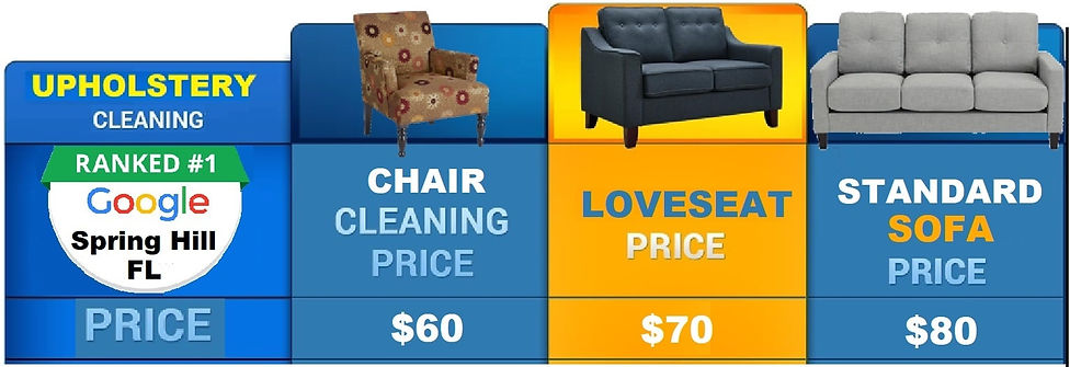 carpet cleaning pricing Spring Hill min.