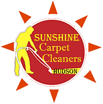 best hudson carpet cleaners.png