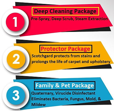 Port Richey carpet cleaning package