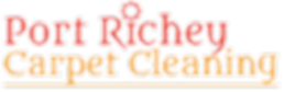 port richey capet cleaning