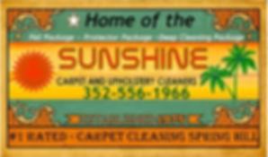 carpet cleaner Spring Hill FL.jpg