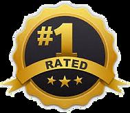 Hudson carpet cleaner best rated