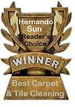 best rated carpet cleaning Spring Hill.png