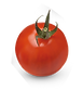 Tomato 4.png