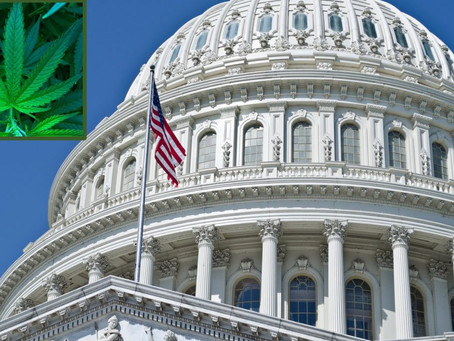 Congress Takes a Historic Step on National Cannabis Legalization