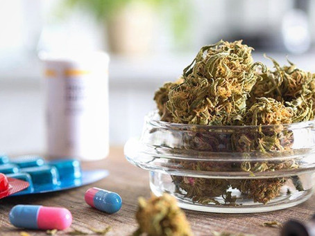 Study: 34% of Chronic Pain Patients Enrolled in MMJ Program Quit Pharmaceuticals