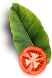 Tomato 2.png