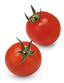 Tomato 5.png