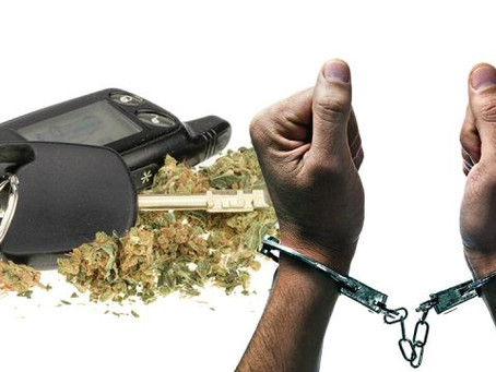 WEED DUI? California Governor Signs Bill Fining Cannabis Use in Vehicles, Vetoes Packaging Measure