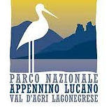 Logo Parco_edited.jpg