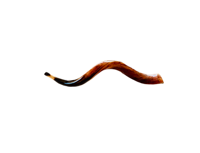 Shofar - small