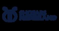 Logo Navi .png