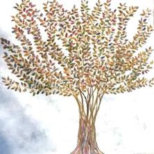 SHIMMERING TREE