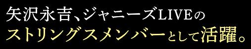 サオリさんコピー02.png