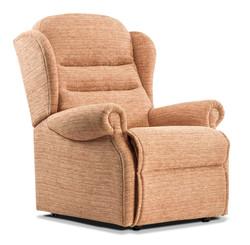 Ashford Standard Chair