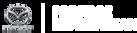 PMS_Logo2019.png