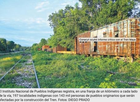 Conacyt ocultó informe crítico con el tren maya