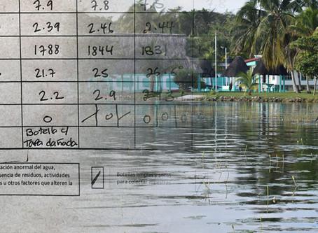 """""""Semáforo"""" de la calidad del agua de la Laguna es presentado por Agua Clara Ciudadanos por Bacalar"""
