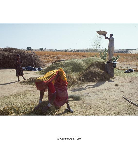 india002.jpg