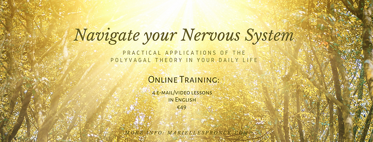 Navigate your Nervous System - banneraan