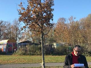 Baum für Bruno in Wesseling
