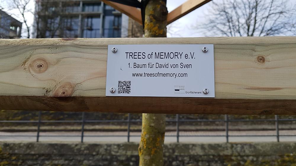 der 1. Baum der Erinnerung am Deutscherrnufer in Frankfurt am Main wurde am 31.03. in einer würdigen Zeremonie gepflanzt.