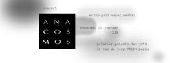 Anacosmos