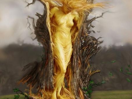 Wszechwiedza Wiedźmy – czyli rzecz o kamiennym kręgu nocą