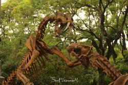 Dinosaurios en Buenos Aires