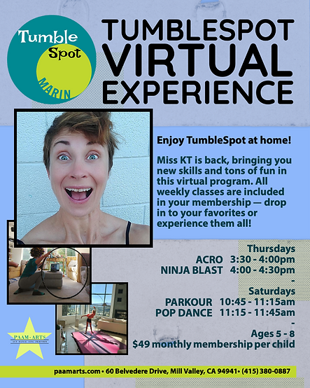 TumbleSpot Virtual Experience Updated.pn
